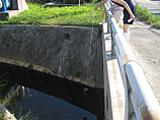 河川水のサンプリング風景。分析の対象となる水試料は、河川や海水浴場で自ら採取します。