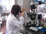 肉眼で見ることのできない細菌や原虫類等は、特殊な薬品で染色した後、顕微鏡で形態・存在量を観察します。