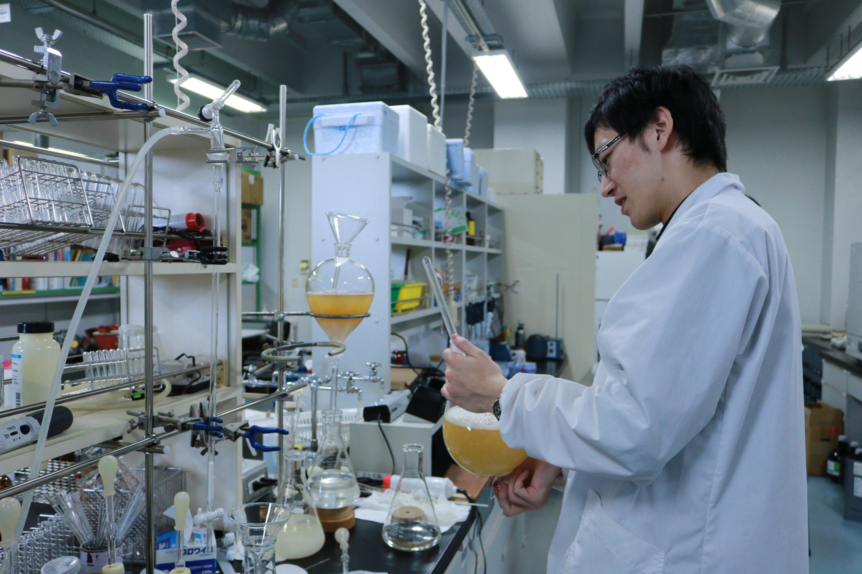 微生物の培養液から代謝産物を抽出しています。