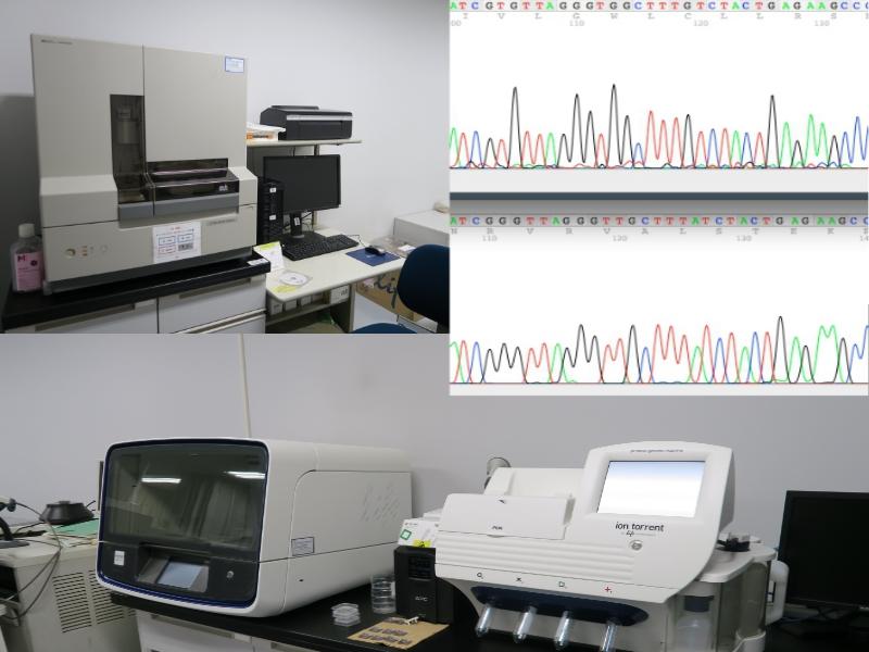 DNAシークエンサー(塩基配列決定装置)